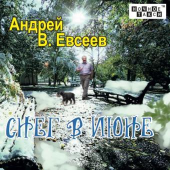 В. Евсеев «Снег в июне» (2020 г.)